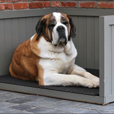 Roosterbed voor pups of volwassen honden